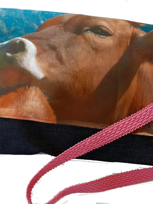 Illustration: Die Kuh-Muh